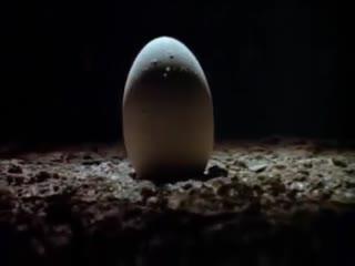 Alien - Official Trailer