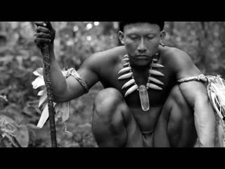 Embrace of the serpent - Official Trailer HD