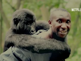 Virunga - Official Trailer HD